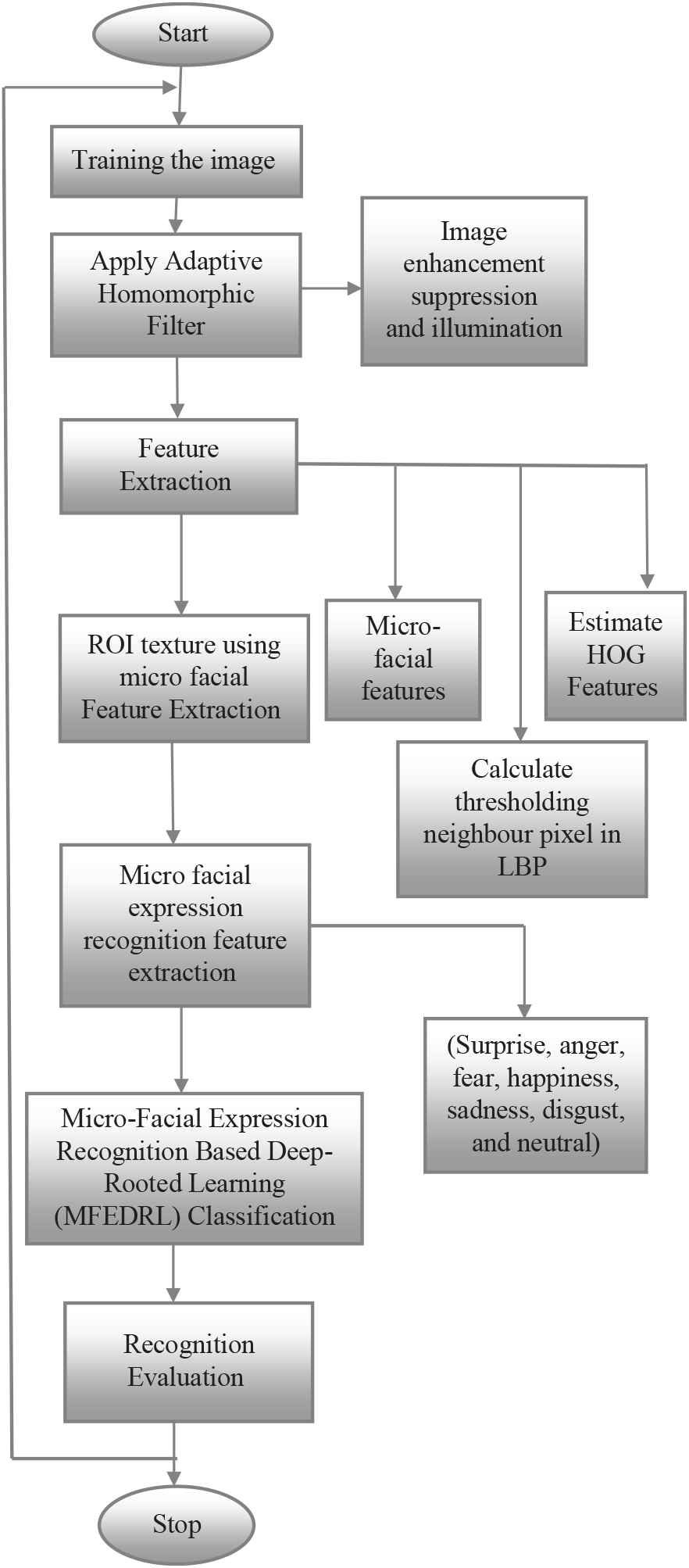 Micro-Facial Expression Recognition Based on Deep-Rooted